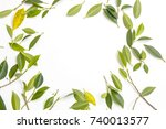 green leaf pattern with a white ... | Shutterstock . vector #740013577