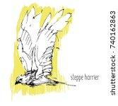 predator birds vector sketches  ... | Shutterstock .eps vector #740162863