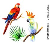 set of birds parrots.... | Shutterstock . vector #740182063