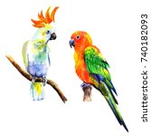 set of birds parrots.... | Shutterstock . vector #740182093