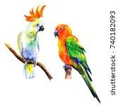 set of birds parrots.... | Shutterstock . vector #740182093