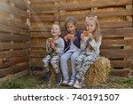 three children in countryside... | Shutterstock . vector #740191507