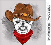 a dog in a cowboy hat.... | Shutterstock .eps vector #740231017