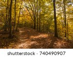 lights in autumn turned colors... | Shutterstock . vector #740490907