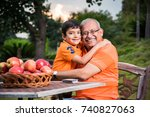 young indian boy embracing...   Shutterstock . vector #740827063