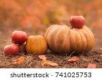 still life of harvest fruit and ... | Shutterstock . vector #741025753