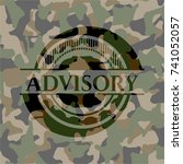 advisory on camouflaged pattern | Shutterstock .eps vector #741052057