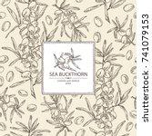 background with sea buckthorn ... | Shutterstock .eps vector #741079153