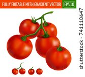 cherry tomatoes on white... | Shutterstock .eps vector #741110647
