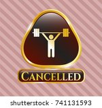 gold badge or emblem with... | Shutterstock .eps vector #741131593