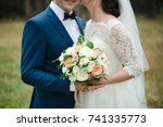groom with the bride  the bride'... | Shutterstock . vector #741335773