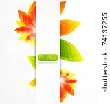 vector abstract flower... | Shutterstock .eps vector #74137255