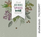 hand drawn herbs and spices... | Shutterstock .eps vector #741503497