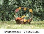 three pumpkins in wicker basket ... | Shutterstock . vector #741578683