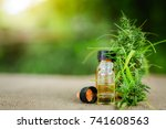 cannabis  cannabis oil extracts ... | Shutterstock . vector #741608563