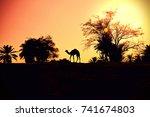 arabian   Shutterstock . vector #741674803