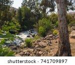 picturesque shore of the... | Shutterstock . vector #741709897