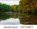 brightly colored trees are... | Shutterstock . vector #741714877