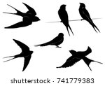 set of swallow silhouettes  ... | Shutterstock .eps vector #741779383