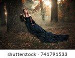 portrait of magnificent fashion ... | Shutterstock . vector #741791533