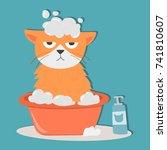portrait cat animal bathe pet... | Shutterstock .eps vector #741810607