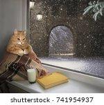 The Cat Sits On The Windowsill...