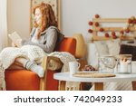 small table with gingerbread... | Shutterstock . vector #742049233