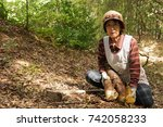 elderly woman harvesting a... | Shutterstock . vector #742058233
