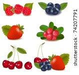 group of cranberries ... | Shutterstock .eps vector #74207791