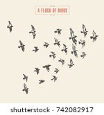 a flock of birds  hand drawn... | Shutterstock .eps vector #742082917