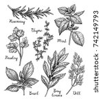 herbs set. ink sketch isolated... | Shutterstock .eps vector #742149793