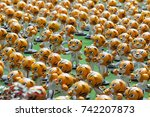 kuala lumpur  malaysia 08... | Shutterstock . vector #742207873