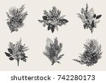 winter set. floral christmas... | Shutterstock .eps vector #742280173