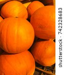 beautiful orange pumpkins  put... | Shutterstock . vector #742328683