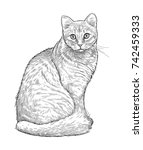 sketch of a house cat | Shutterstock . vector #742459333