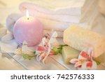spa treatment. | Shutterstock . vector #742576333