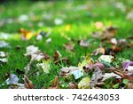 close up of an autumnal path in ... | Shutterstock . vector #742643053