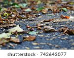 close up of an autumnal path in ... | Shutterstock . vector #742643077