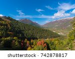 The Autumn With Foliage In The...