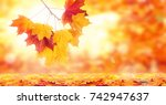 autumn leaves on the sun and... | Shutterstock . vector #742947637
