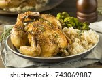 herby baked cornish game hens... | Shutterstock . vector #743069887
