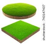 3d illustration of little grass ... | Shutterstock . vector #743147437
