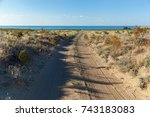 desert on the shore of sea ... | Shutterstock . vector #743183083
