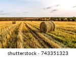 agriculture field harvest... | Shutterstock . vector #743351323