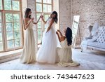 last details. full length of... | Shutterstock . vector #743447623