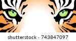 tiger eyes | Shutterstock .eps vector #743847097
