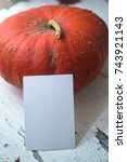 Small photo of Pumpkin on a natural wooden white background mocap