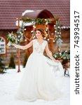 portrait of the bride in the... | Shutterstock . vector #743934517