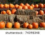 Rows Of Pumpkins On Top Of Hay...