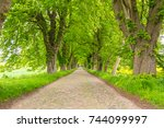 countryside road among the trees | Shutterstock . vector #744099997